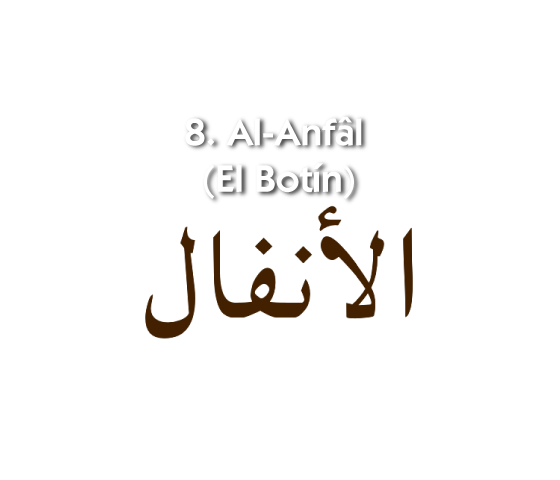 8. Al-Anfâl (El Botín)